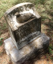 """While our grandparents tended the graves of our loved ones, my sister and I picked berries and """"fed"""" them to this concrete dove on a random headstone near our family plot."""