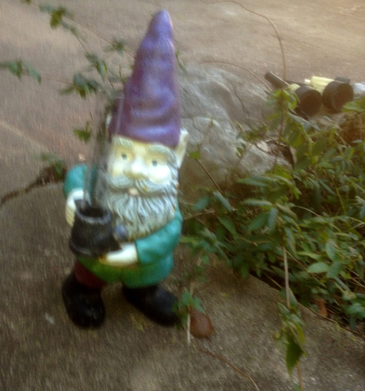 Yes, the gnome invasion has reached Texas. I spotted this little guy outside my mother-in-law's house, where he was masquerading as a rain gauge.