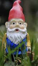 This is a gnome.