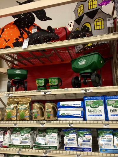 """Some """"merchandising pathfinder' went off the map when he put this grass seed into the Halloween bay! Ha ha, but Grandpa found it anyway!"""