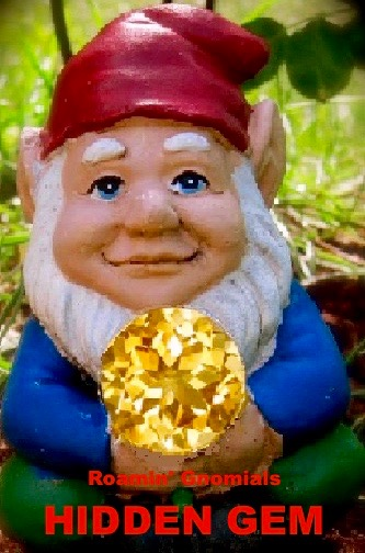 It won't take long before the Roamin' Gnomials Hidden Gem award is the most coveted award in all of WordPress!
