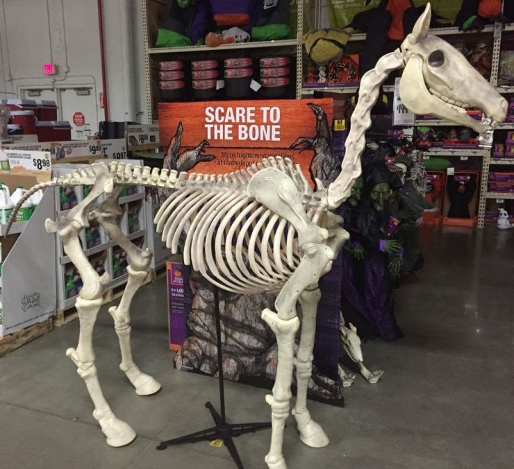 Our skeleton horse has galloped away.